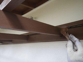 木製テラス防虫防腐剤塗り