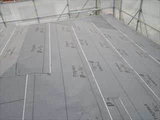 大屋根ルーフィング貼り